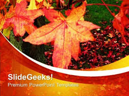 Beautiful Autumn Leaves Powerpoint Templates Ppt Backgrounds For