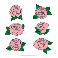 Small Picture Pretty hand drawn roses Vector Free Download