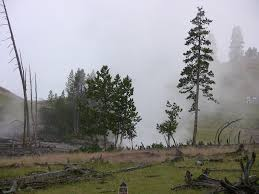 mist summer travel scenic weather landmark geology mountains geyser habitat wyoming montana yellowstone national park rural area natural
