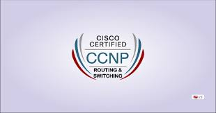 routing and switching ccnp routing switching certification training in gurgaon delhi