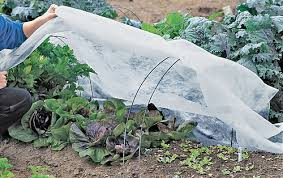 garden covers. Simple Covers AllPurpose Garden Fabric For Covers