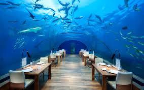 poseidon underwater hotel. Underwater Hotel Atlantis - Google Search Poseidon T