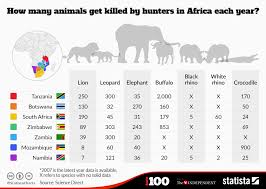Chart How Many Animals Get Killed By Hunters In Africa Each