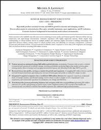 Example CEO Resume for Executive