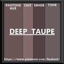 PANTONE SEASONAL COLOR SWATCH DEEP TAUPE