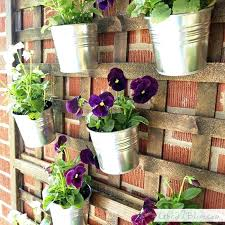 a tutorial for stained lattice with galvanized planters outdoor plant wall art ways hang plants