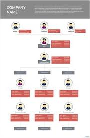 It Organization Chart Example Orgchart Example Organizational Chart Organizational