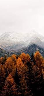 autumn fall iphone x wallpaper ...