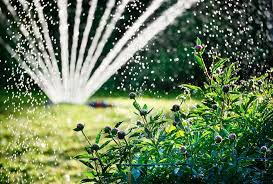 irrigation systems for gardens in the french riviera