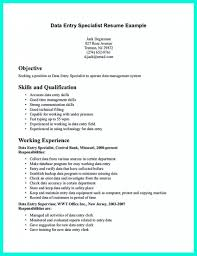 Resume Sample For Data Entry Clerk Danaya With Resume Examples