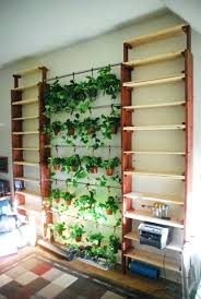 how to make an indoor herb garden. How To Make Indoor Herb Garden Herbs Ideas Picture Diy Wall An
