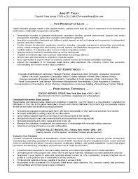 Dorable Resume For Retail Merchandiser Collection Documentation