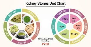 Kidney Stone Diet Chart In Hindi Pdf Diet Chart For Kidney Stones Patient Kidney Stones Diet