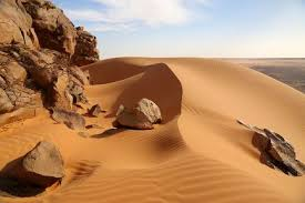"""Résultat de recherche d'images pour """"guerrier mauritanien"""""""