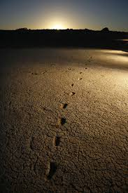 friday essay when did s human history begin  fossilised ancient human footprints at the mungo national park how are we to engage a history that spans 65 000 years michael amendolia aap