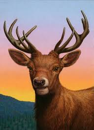 portrait of a red deer painting by james w johnson