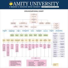 Singapore Power Organisation Chart Organisational Chart
