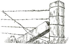 barbed wire fence drawing. Contemporary Fence Throughout Barbed Wire Fence Drawing W