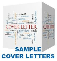 Sample Of A Professional Cover Letter Basic Cover Letter Sample