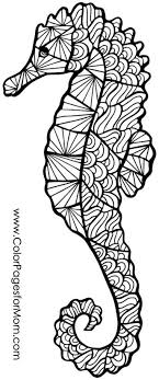 Small Picture Seahorse coloring page I Love Coloring Pinterest Seahorses
