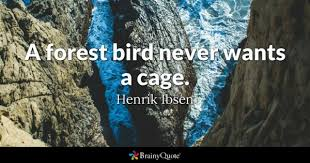 Forest Quotes Simple Forest Quotes BrainyQuote