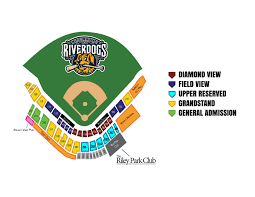 Box Office Hours Riverdogs
