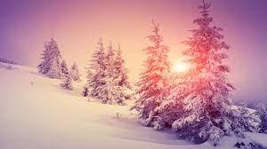 Winter Pink Wallpapers - Wallpaper Cave