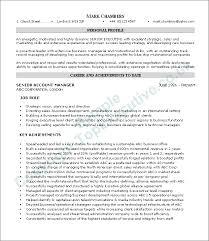 Resume Executive Summary Examples Amazing Resume Executive Summary Example Resume Badak