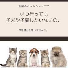 ペット ショップ 売れ残り 福岡