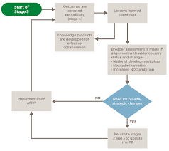 Stage 5 Flow Diagram Country Engagement Tool