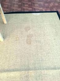 pottery barn sisal rug tweed custom canada discontinued rugs 9
