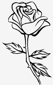 900x1441 full hd rose line drawing photo 3d 3d flowers pencil drawing