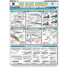 Bait Rigging Chart Circle Hook Rigs Card Tl Br6 8 99
