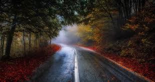 Colorful Road In Fall 4k Ultra Hd Wallpaper Greece