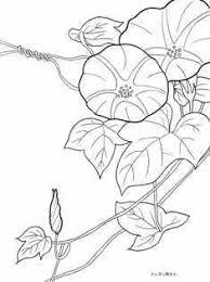 夏の花のぬりえ 季節の花四季の花の大人の塗り絵