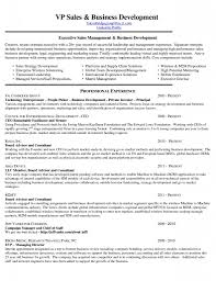 Business Development Sample Resume Manager Cv Photo Examples