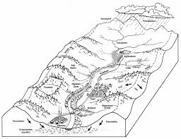 Worksheet Template : Faqs   Tualatin River Watershed Council ...