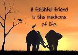 of friendship images free
