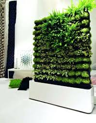 how to make a vertical garden. indoor vertical gardening beautiful garden ideas decorating easy on the eye how to make kit australia a