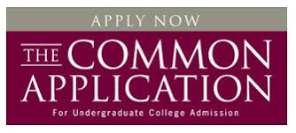 Filling out the Common Application   Ivy Coach