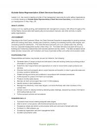 Standard Professional Resume Format Awesome Sample Sales Rep And