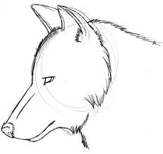 wolf howling drawing head. Contemporary Head Wolf Head Related Keywords Suggestions  Long Tail Inside Howling Drawing