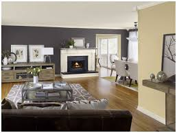 What Is The Best Color To Paint A Living Room Best Color Paint For Living Room Walls Fancy Best Ideas Accent