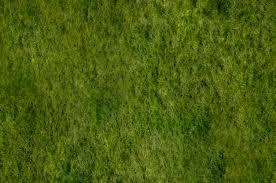 seamless dark grass texture. Seamless Grass Texture: Then Dark Texture W