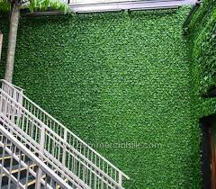 english ivy fence panels exterior