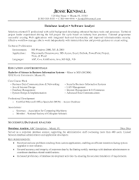 Database Analyst Resume Free Resume Example And Writing Download