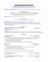 resume template for teens luxury invisible man essay thesis essay  gallery of resume template for teens luxury invisible man essay thesis essay most enjoyable day causes of wwii