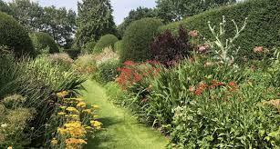 violets and tea luxury garden tours visit petersham nurseries london