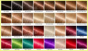 Lace Wig Hair Color Chart Wig Hair Color Chart 1793 Hair Color Chart Tutorials