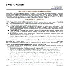 What Are Good Objectives For A Resume Magnificent Best Objective For Resume Examples Dewdrops